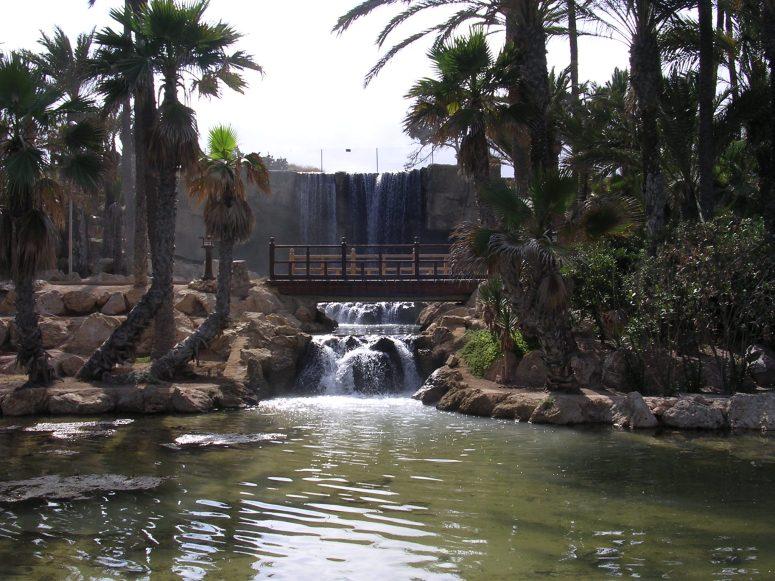 PARQUE DE EL PALMERAL DE ALICANTE