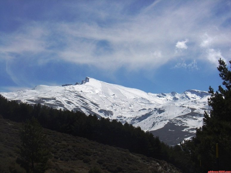 VELETA (SIERRA NEVADA)