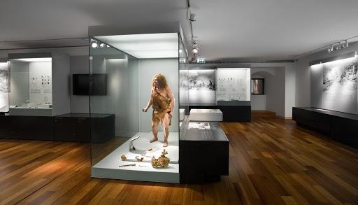 13. MUSEO ARQUEOLÓGICO DE ASTURIAS (OVIEDO)