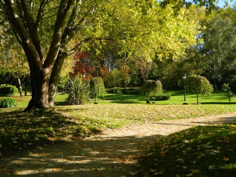 13. PARQUE DE CASTRELOS (VIGO)