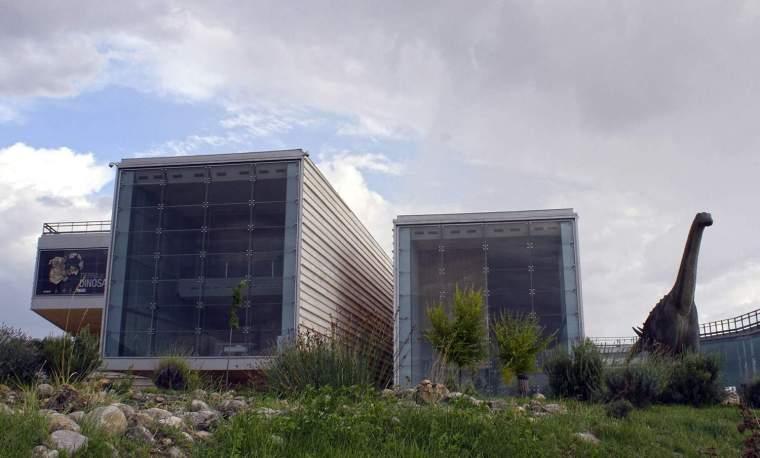 7. MUSEO DE PALEONTOLOGÍA